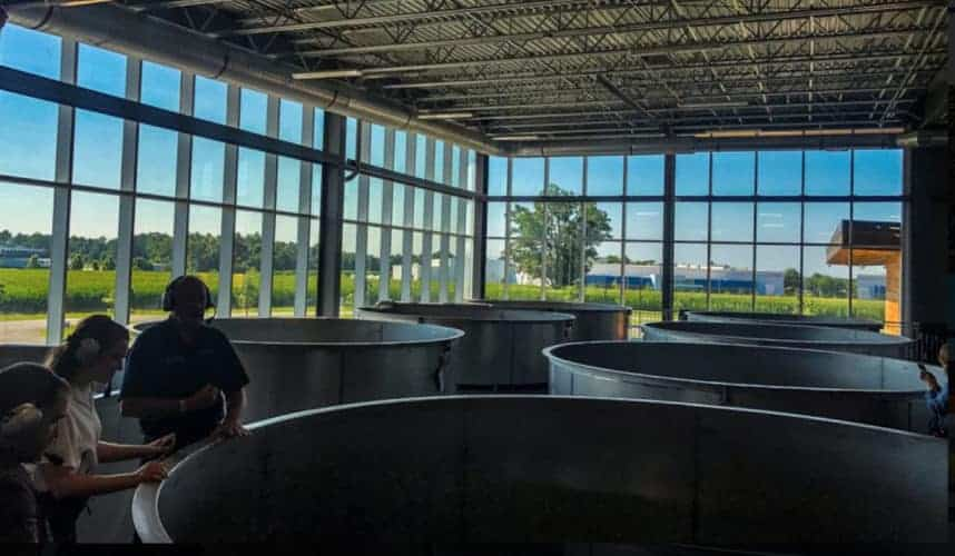 A room of bourbon brewing vats looks out on kentucky countryside. A tour here makes a really special father's day present.