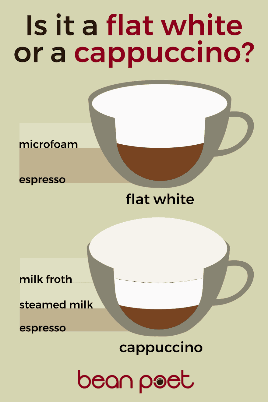 Infographic showing the difference between a cappuccino and a flat white
