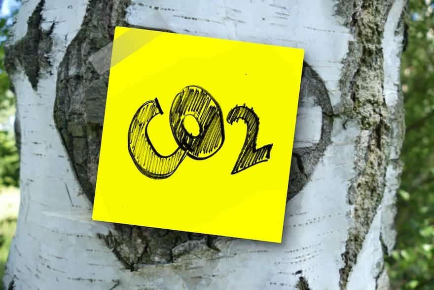 A sticky note on a tree trunk with the chemical symbol for carbon dioxide