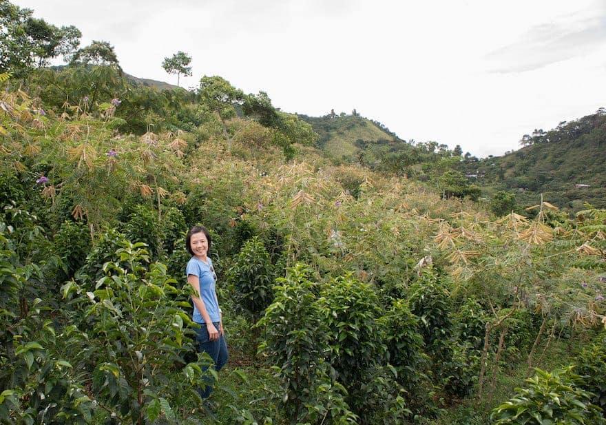 Woman standing in coffee farm