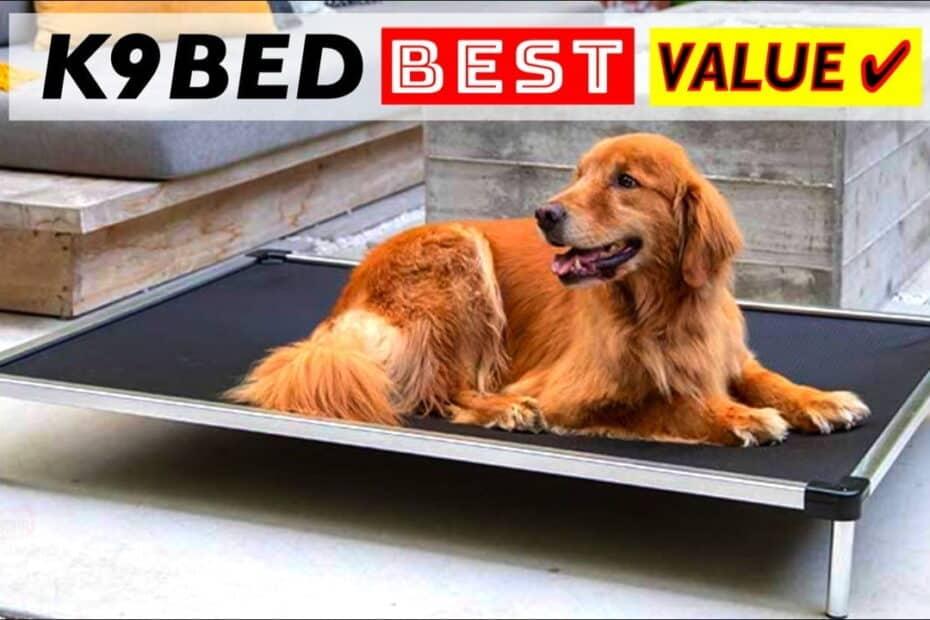 Best Value K9 Ballistics Dog Bed