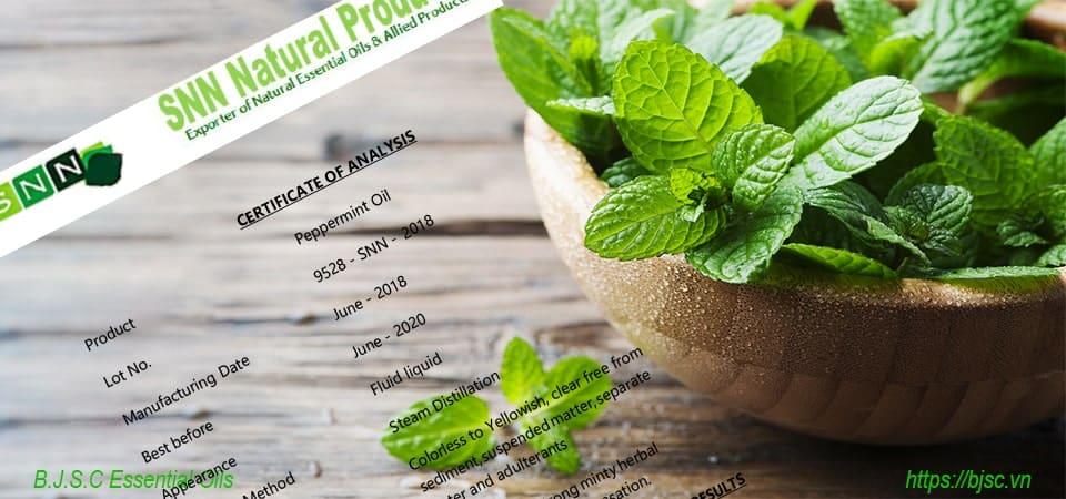 peppermint-essential-oil-la-gi
