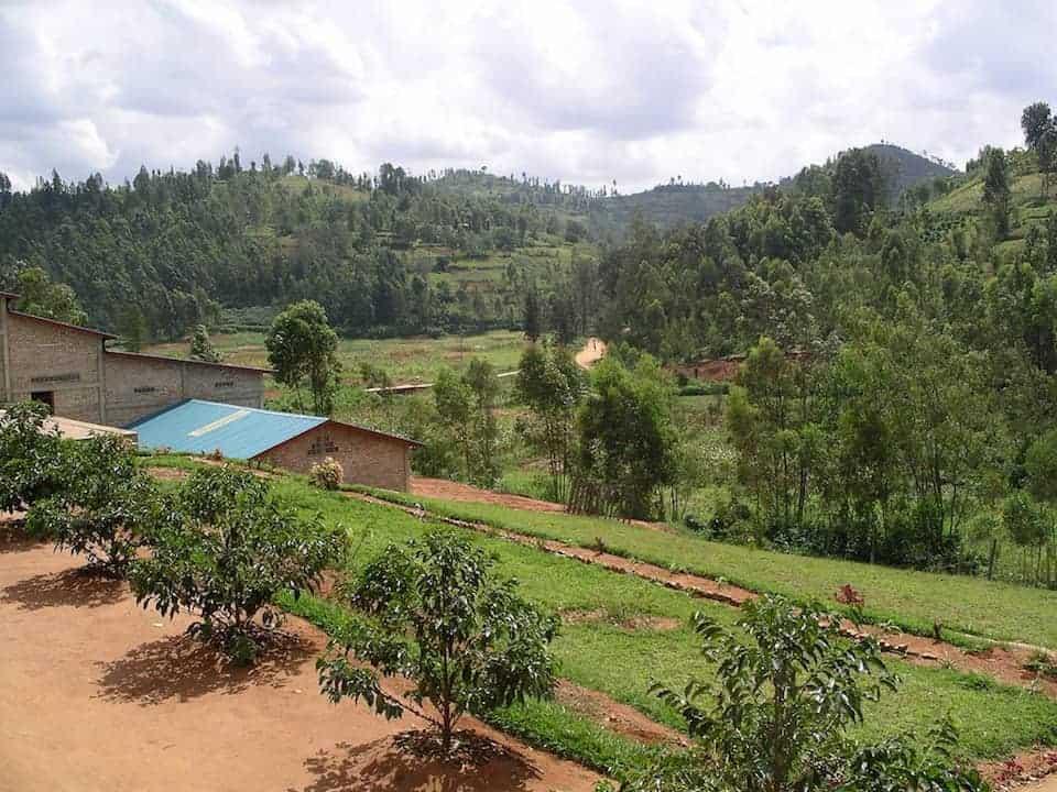 Coffee farm in Rwanda