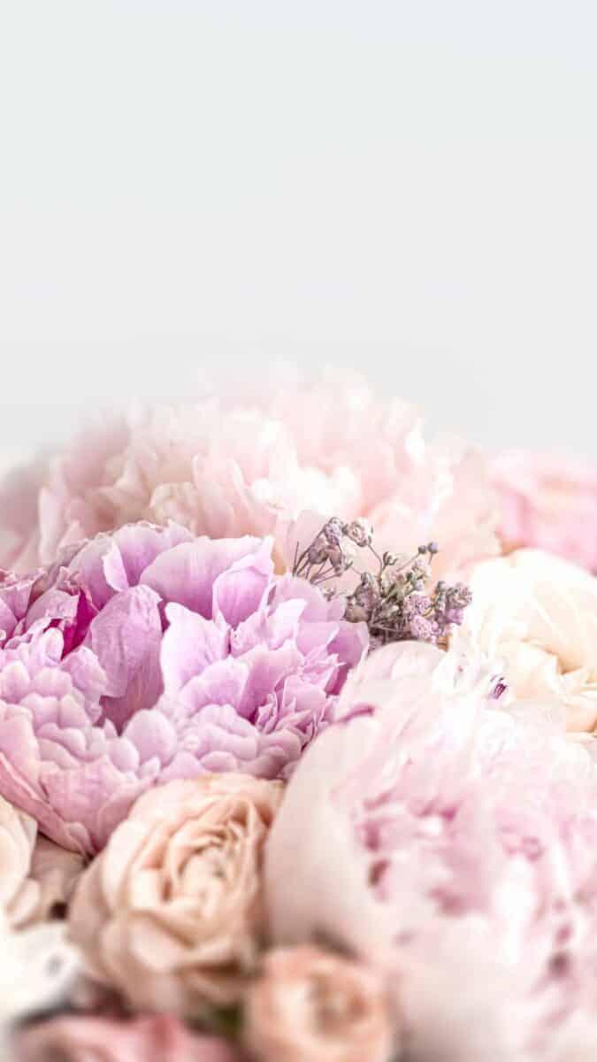 wallpaper aesthetic, pink flower wallpaper iPhone