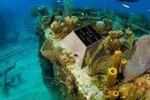 Buried at Sea: Underwater Memorial Plots for Sale in the Chesapeake