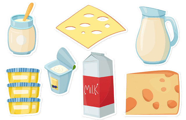 dairy products 乳製品