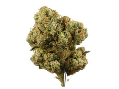 Buy Marijuana Online With Credit Card Where Can I Order Weed Online In Texas?