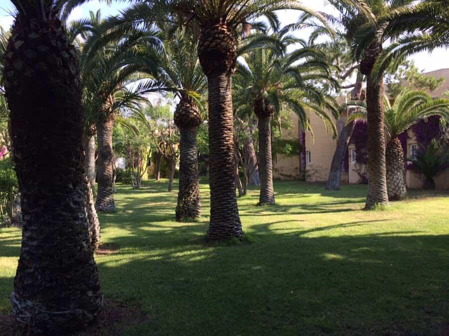 photo numérique jardin hôtel Brucoli Village en Sicile