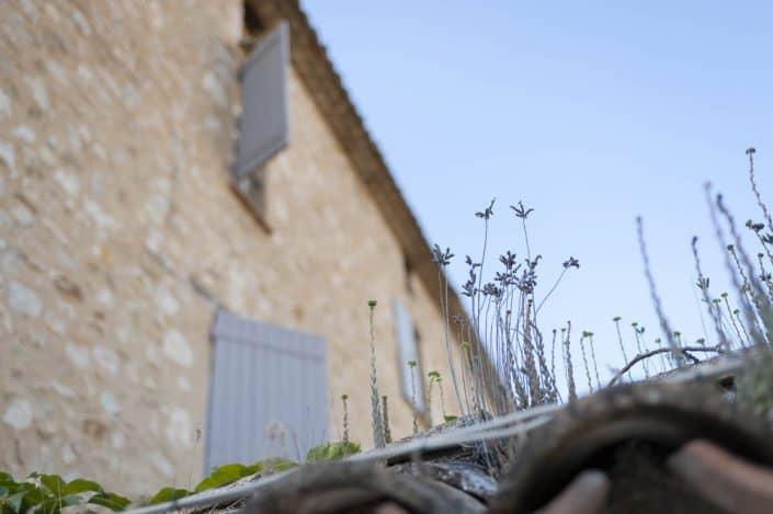 Bastide du Vieux Chêne, Condorcet - 10