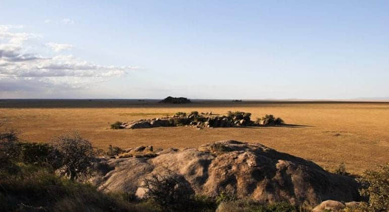 Namiri Plains Kopjes