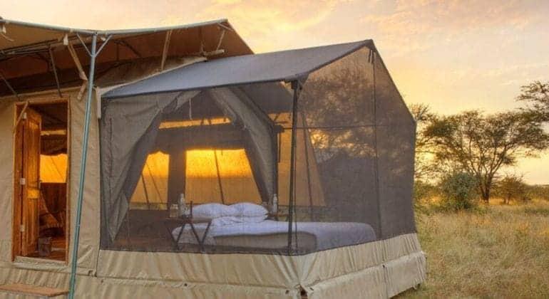 Olakira Camp Tent Closeup