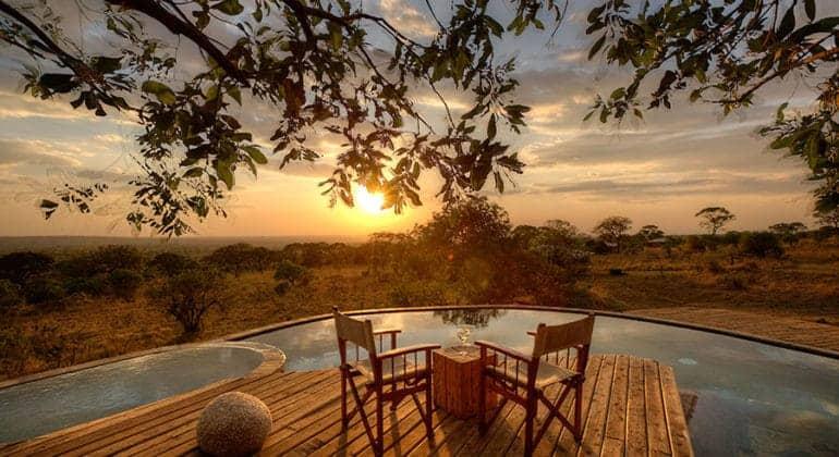Serengeti Bushtops Pool Deck