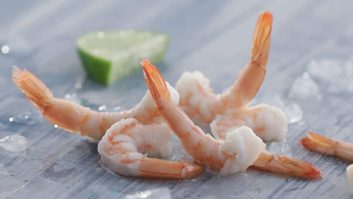 Organic Shrimp