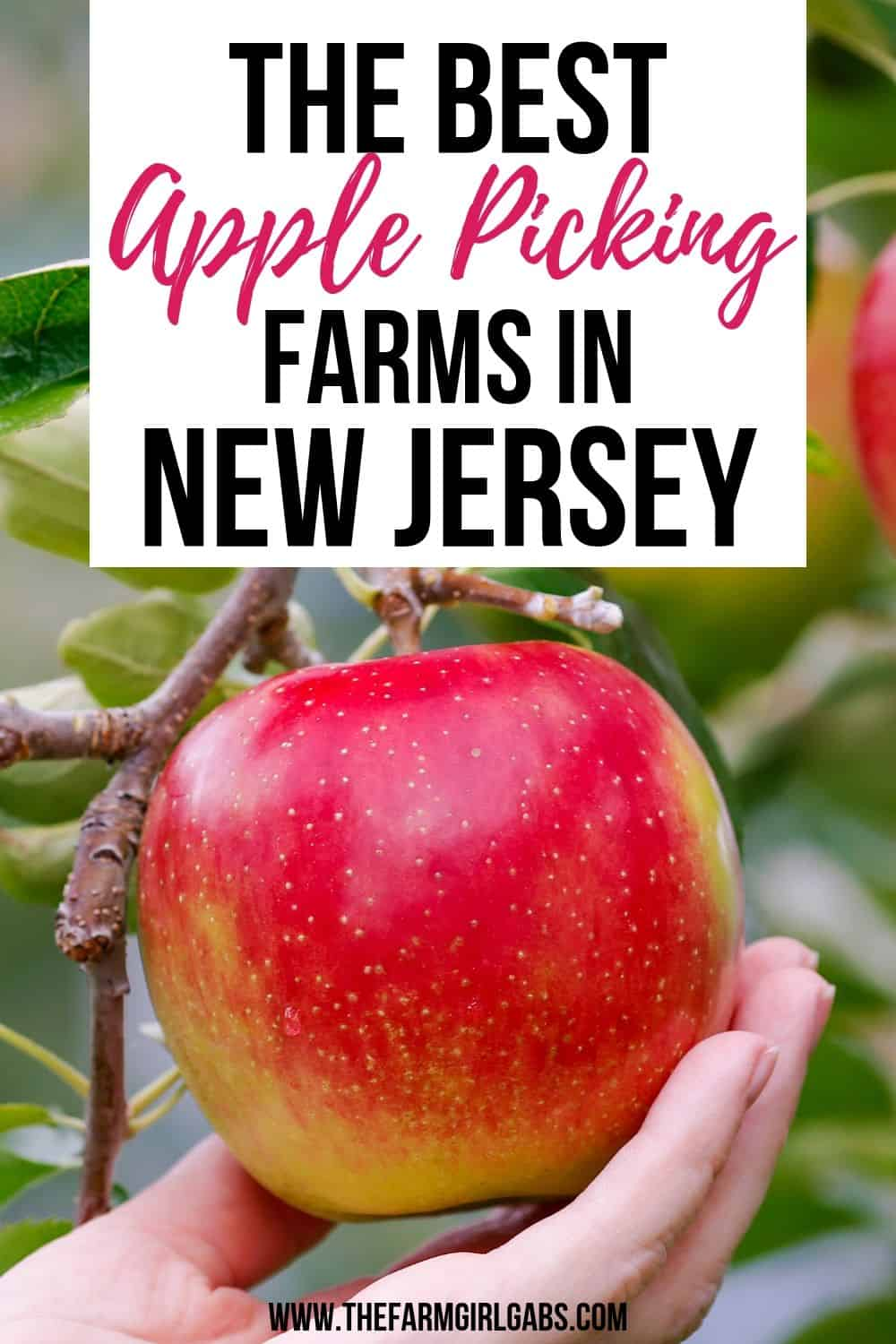 Ready for some fall fun? It's apple season. Take the family to one of the Best Farms To Pick Your Own Apples In NJ. #applepicking #njappleorchards #pickyourownapplesnj