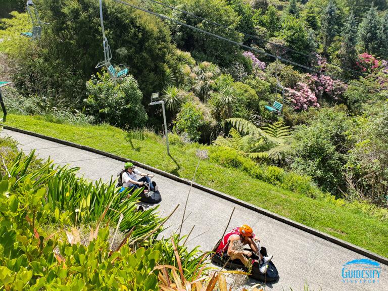 Luge Skyline Rotorua Track