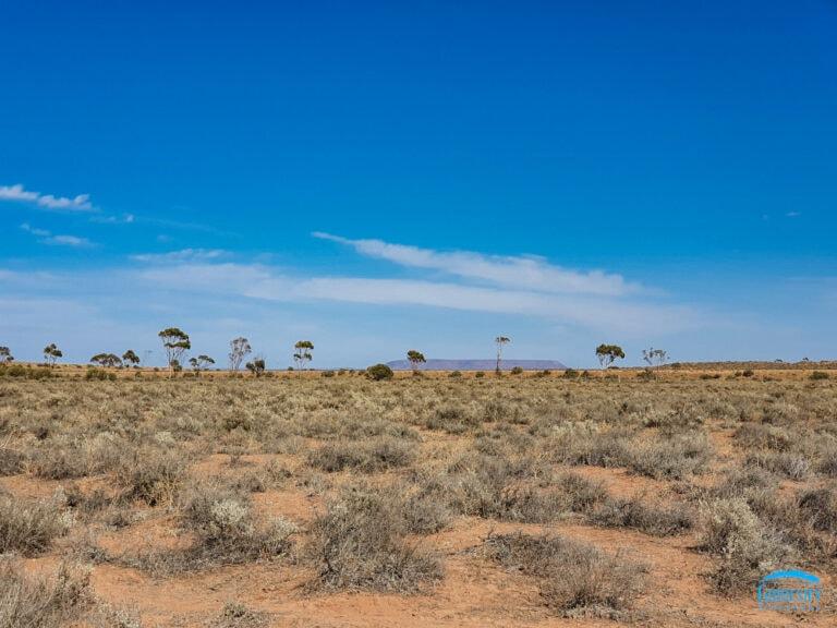 Australian Arid Botanic Gardens Port Augusta Eyre Peninsula