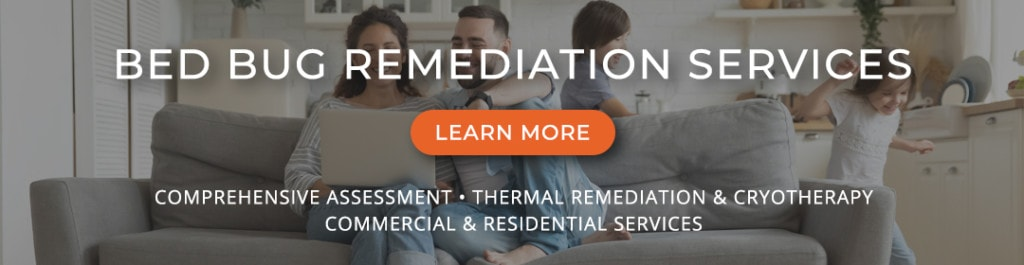 Bed bug remediation services