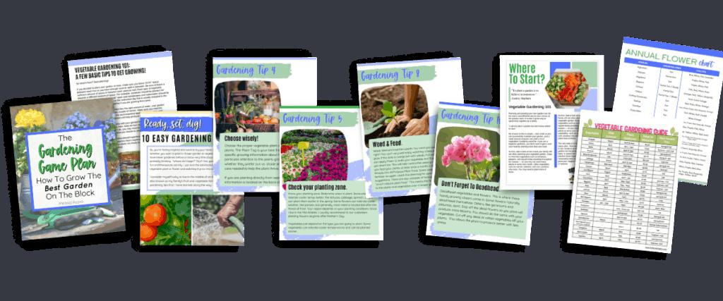 gardening game plan ebook images