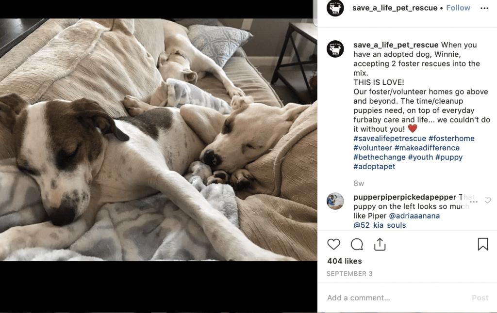 social media nonprofit post