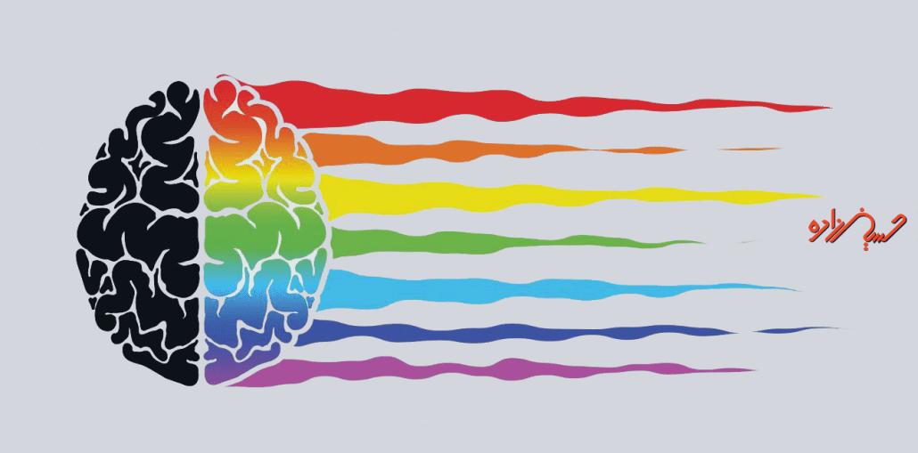 رنگ شناسی یکی از نکات مثبت در ساخت رزومه حرفهای