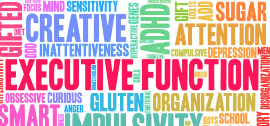 Executive Function Occupational Therapy