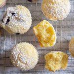 basic muffin, gluten free