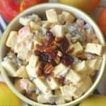 Apple Cranberry Fall Fruit Salad