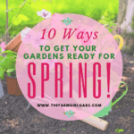 10 Ways To Get Your Gardens Ready For Spring