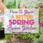 Spring Flower Garden Tips