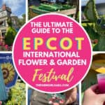 Ultimate Guide To Epcot Flower And Garden Festival