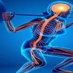 Upper Body and Lower Body Rehabilitation