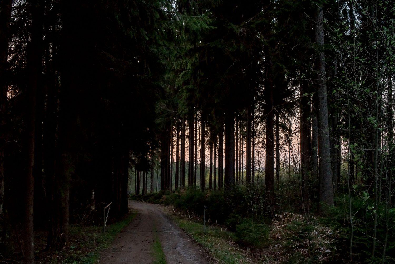 in der Nähe von Manebach ca 20 Minuten nach Sonnenuntergang © Andreas Pöcking Fotograf in Thüringen