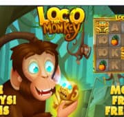 Loco The Monkey Pokies