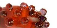 Fragement Trollbeads Glass 61341
