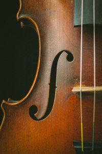 body of violin