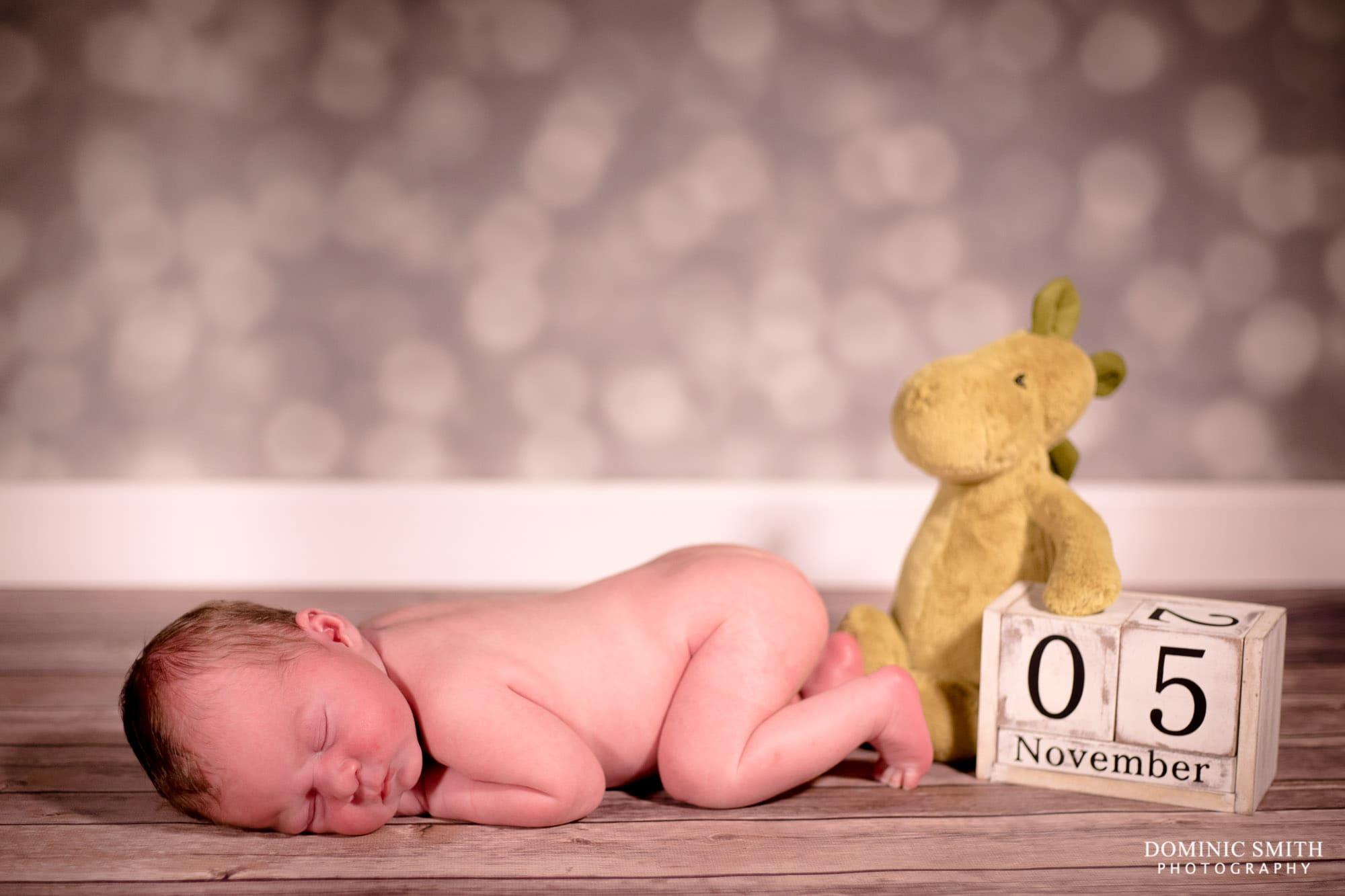 Newborn Photoshoot Date Dinosaur