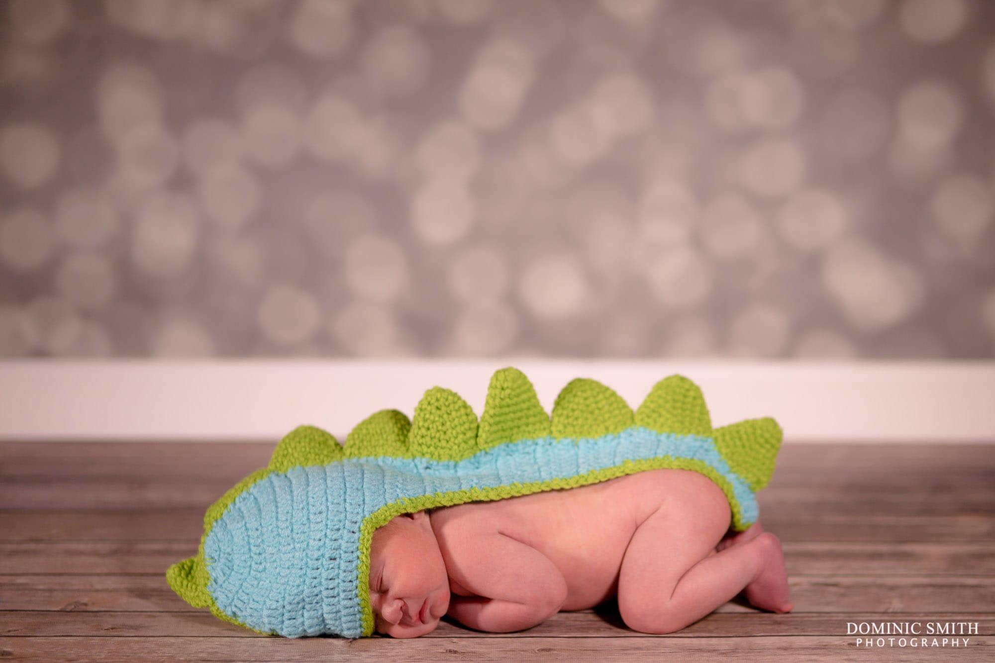 Newborn Photoshoot Dinosaur