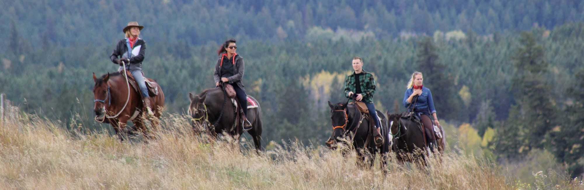 trail ride alpine meadows