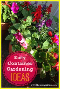 Easy container flower gardening ideas for spring and summer.