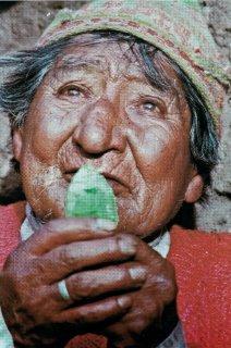 Paña, het mystieke pad van de Andes, Chakanaherb Marke