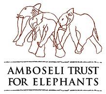 amboselitrustelephants 1 - Afrikansk Savanneelefant
