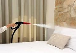 Nettoyeur assainisseur vapeur 902S pour désinfecter les textiles