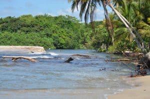 Rio San Salvador ,Como llegar a Palomino?