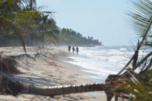 Playa Palomino