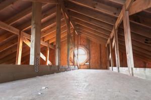 activity in the attic