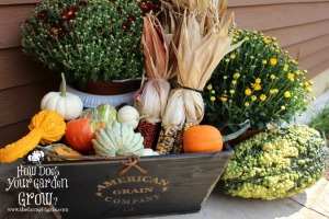 Box with gourds