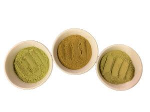 free kratom sample powder, Free Kratom Sample Powder 5g – 1.8% Alkaloid, Buy Kratom Online - the evergreen tree |