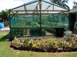 irrigation watering methods