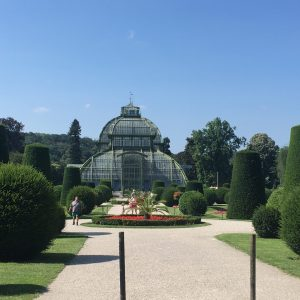 Palmový skleník, Schönbrunn