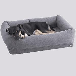 Best Dog Bed for Senior Dogs - BarkBox Orthopedic Bed